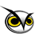 Night Owl webstudio